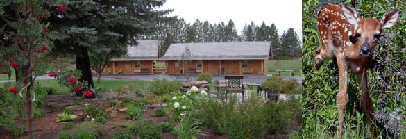 Glacier Rock Gallery Bed Breakfast
